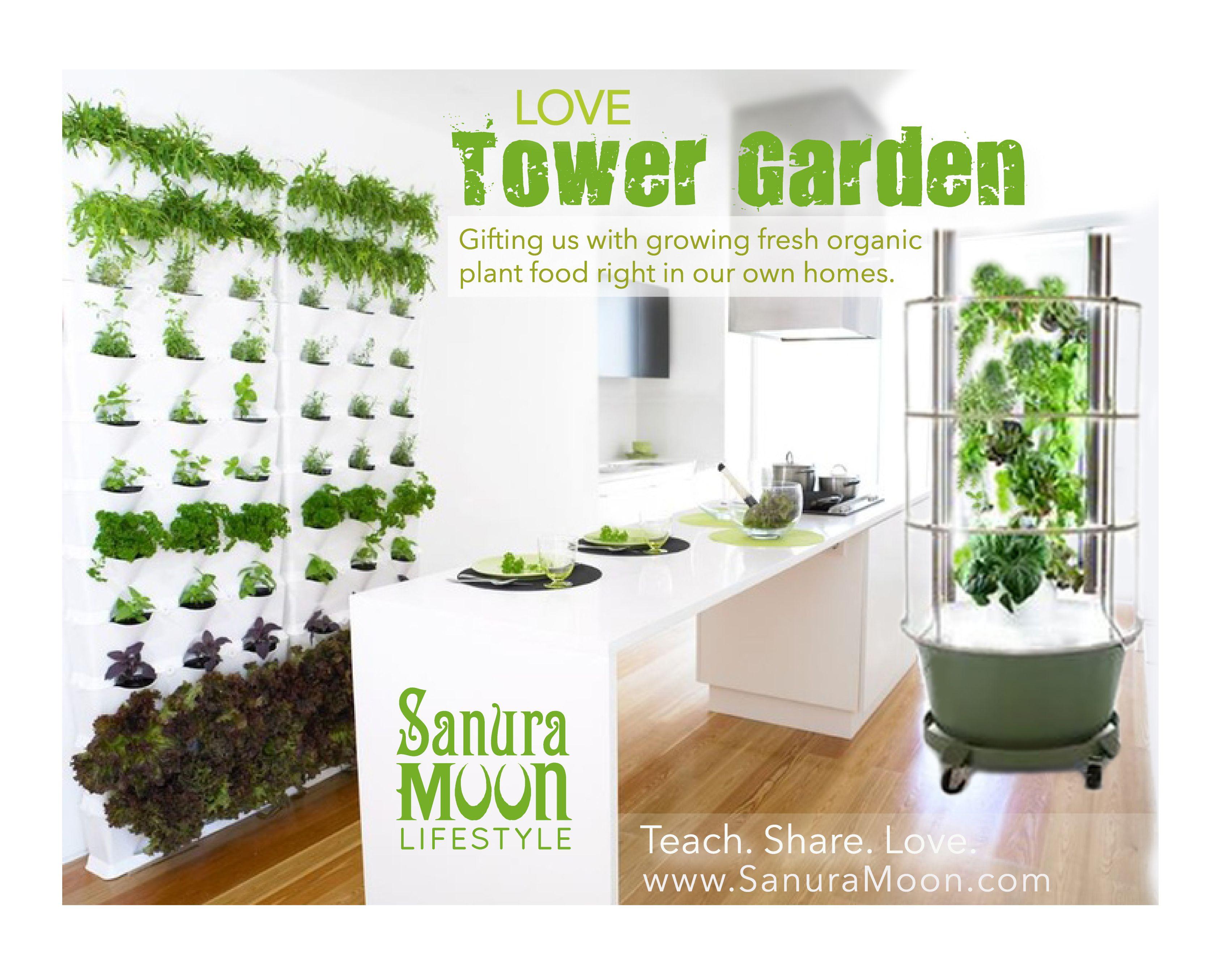 Kitchen Garden - Home Garden - Garden in your house. #garden ...