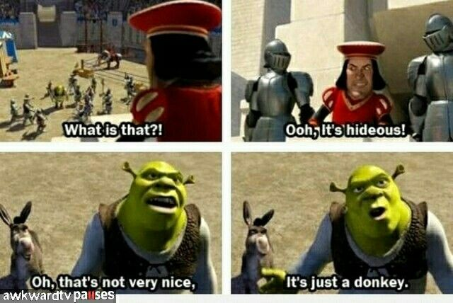 That Is Not Nice Shrek Funny Dreamworks Movies Funny Movies
