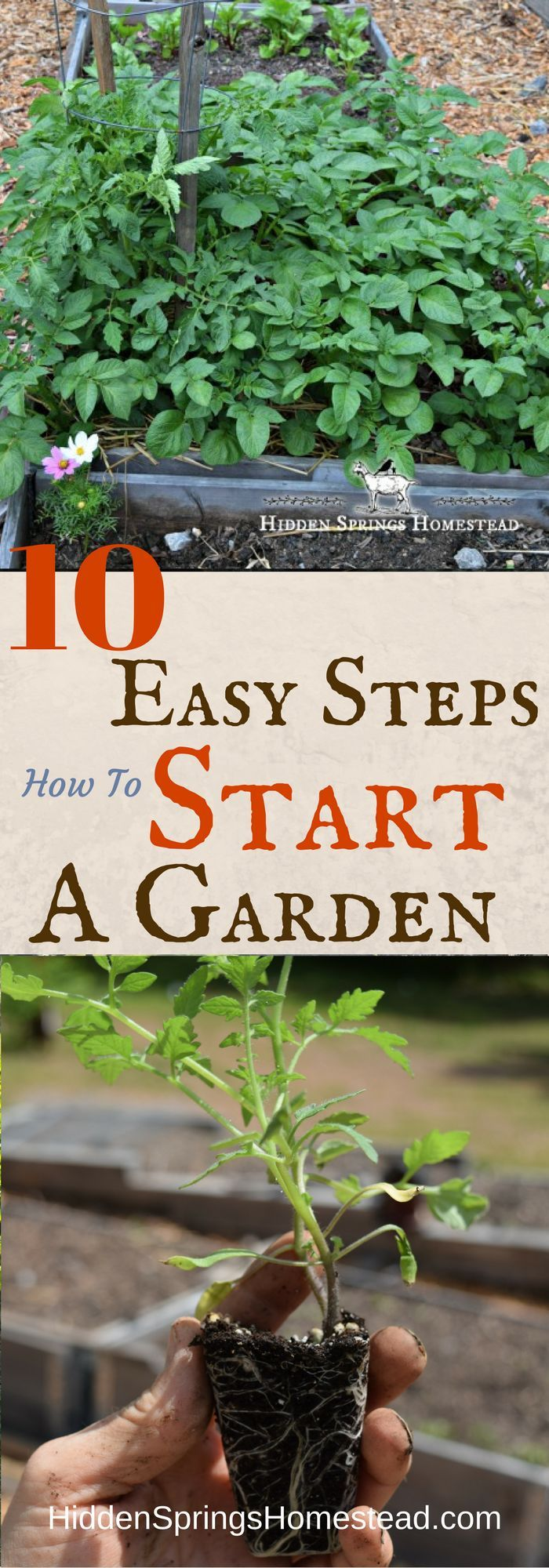 How To Start A Garden   10 Easy Steps | Gardening | Pinterest | Homesteads  And Gardens