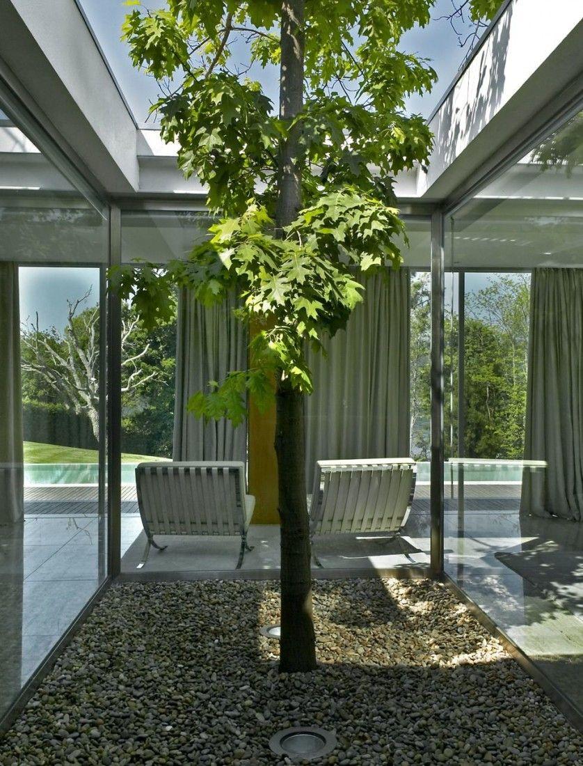 Simple modern solarium ideas sobreterrazas pinterest for Decoracion patios internos