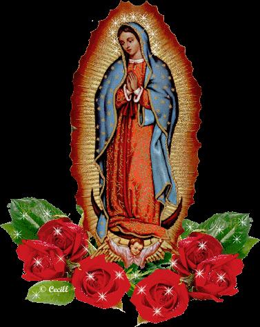Virgenguadalupe Ctv1a Gif 377 475 Imagenes De La Santa Virgen De Guadalupe Virgen De Guadalupe Mexico