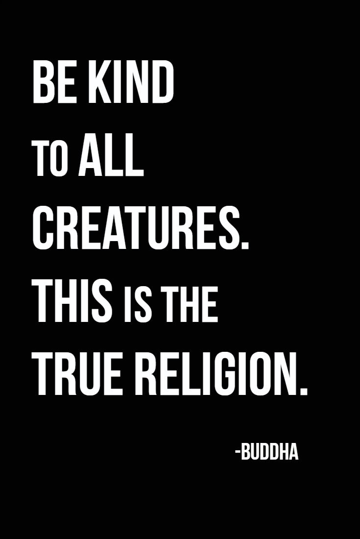 Kindness and Love Triumph all. Practice Kindness in all ...Quotes About Love For Humanity