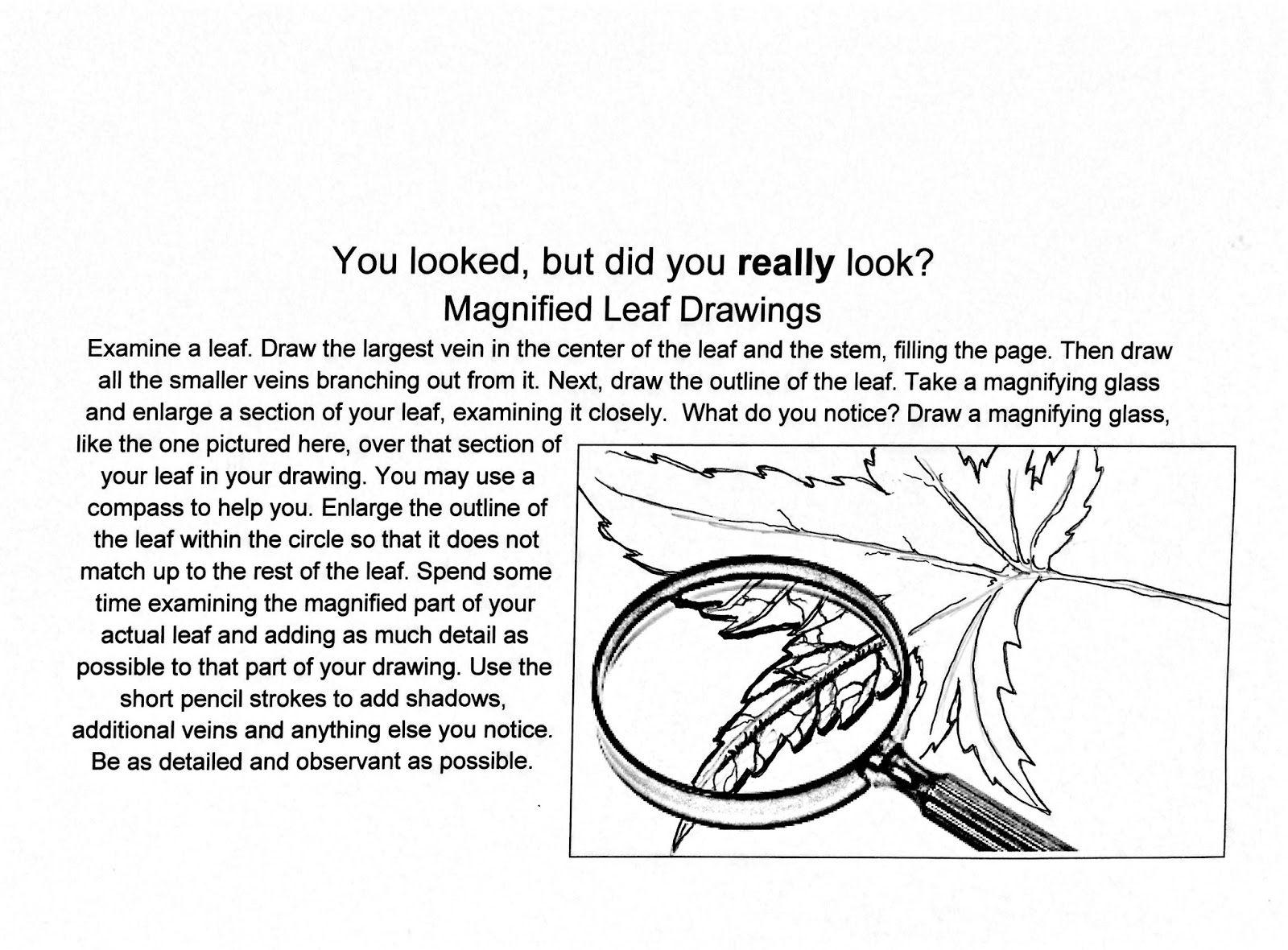 Image Result For Students Artwork Worksheets
