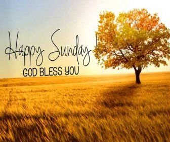 Happy Sunday Quotes For Friends, Blessed Sunday Morning Quotes, Blessed  Sunday Quotes Sayings,