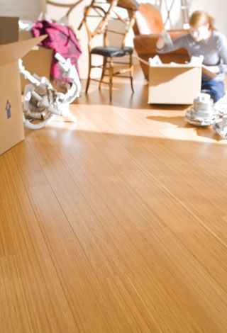 Teragren Craftsman Ii Long Plank Pureform Bamboo Flooring