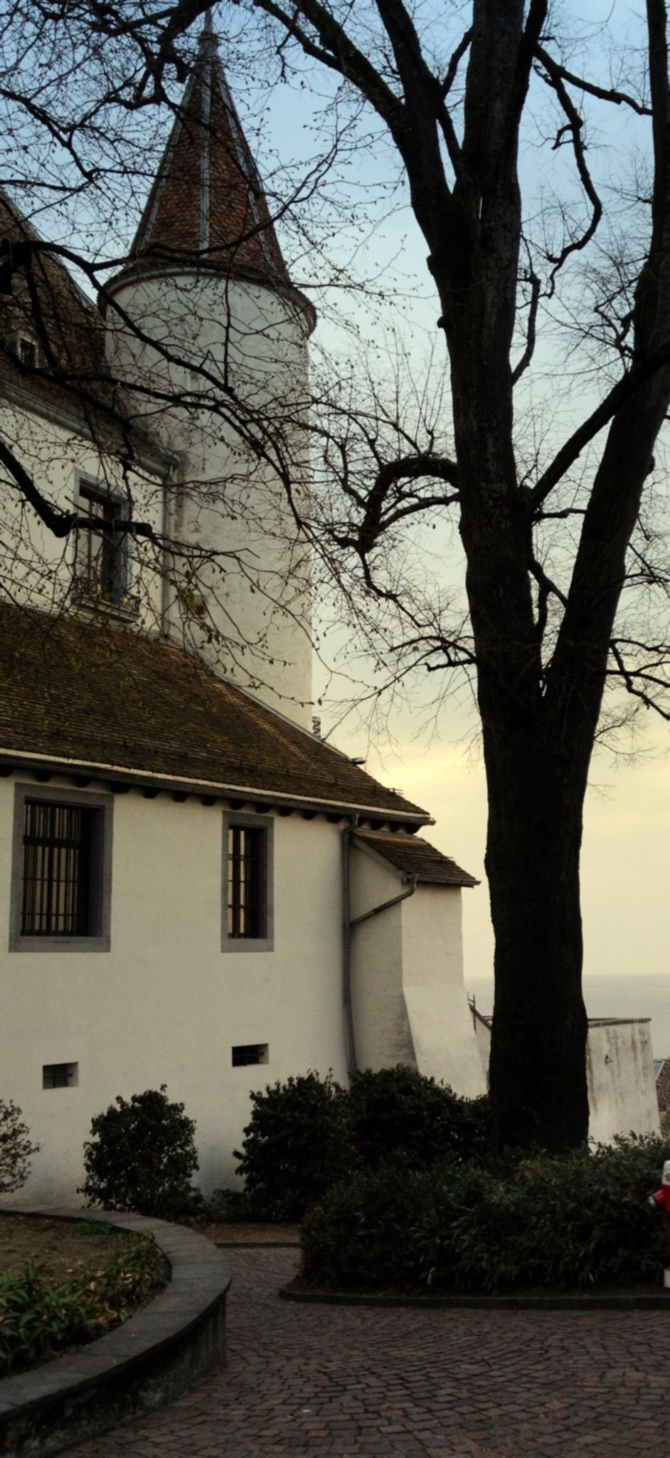 Castillo de Nyon - Ubicado sobre una colina de la costa es el Château de Nyon, una fortaleza del siglo 12 con una magnífica terraza con al lago y Mont Blanc. Sus amplias habitaciones tienen la colección del Musée Historique, que narra la historia de los habitantes del castillo de la residencia de los duques de Saboya (1293-1536) a través de la ocupación por el Oberland (1536-1798) para la recuperación por el cantón de Vaud después de la revolución . Bodega fabulosa!