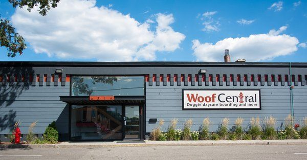 woof central a new doggie daycare business located just off penn