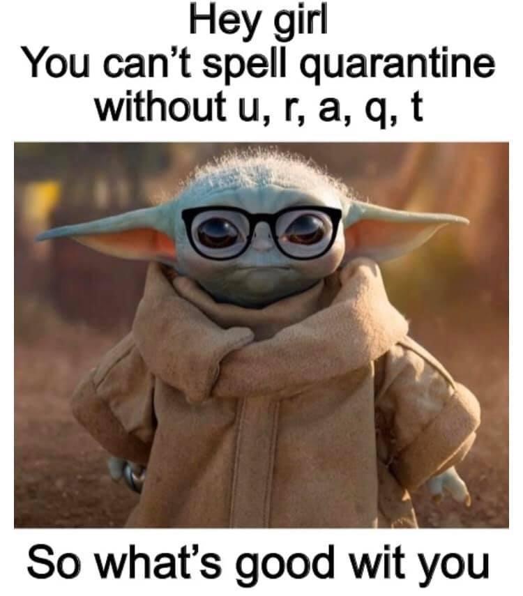 I Laughed Way Tooooo Hard On This R Babyyoda Baby Yoda Grogu Yoda Funny Yoda Meme Really Funny Memes