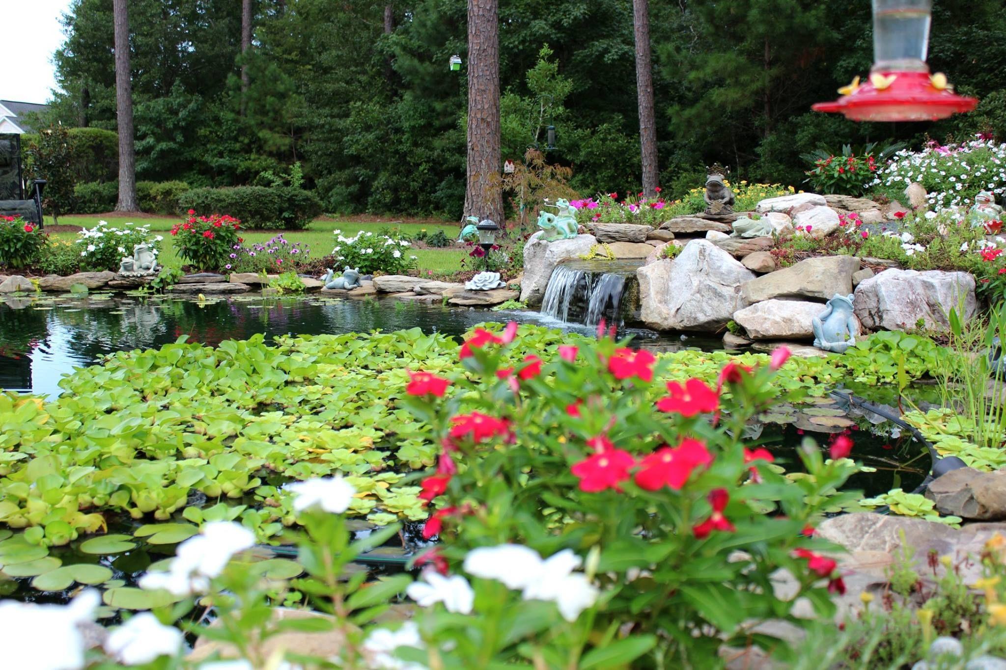 Pond Landscaping, Garden Pond, Pond Ideas, Ponds, Water Feature