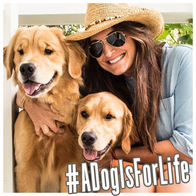 ADogIsForLife A dog selfie for change (I need your help