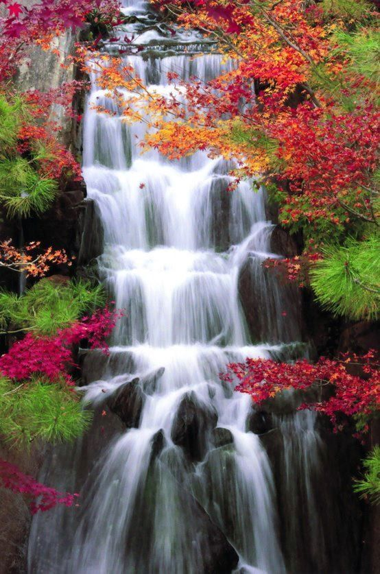 Autumn Waterfalls Red Nature Trees Autumn Leaves Fall Beauty Waterfalls Waterfall Autumn Waterfalls Gardens Of The World