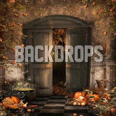 10X10-COMPUTER-PRINTED-HALLOWEEN-BACKDROP-BACKGROUND-BANNER - halloween backdrop