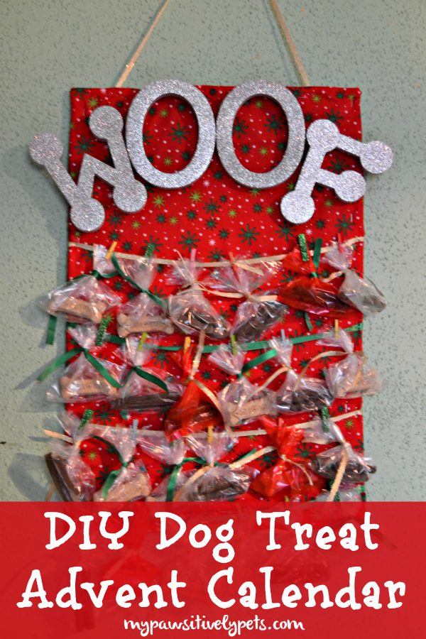 diy dog treat advent calendar treatthepups good pet websitesdiy dog treat advent calendar treatthepups sponsored www mypawsitivelypets