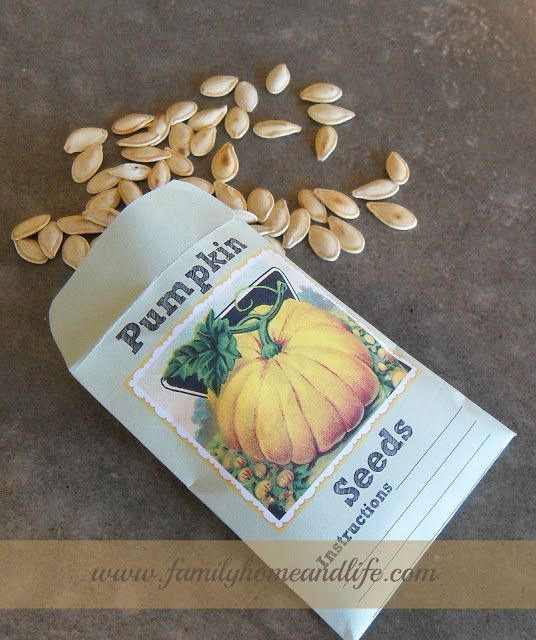 Pumpkin Seed Packets Tutorial with free printable templatethese