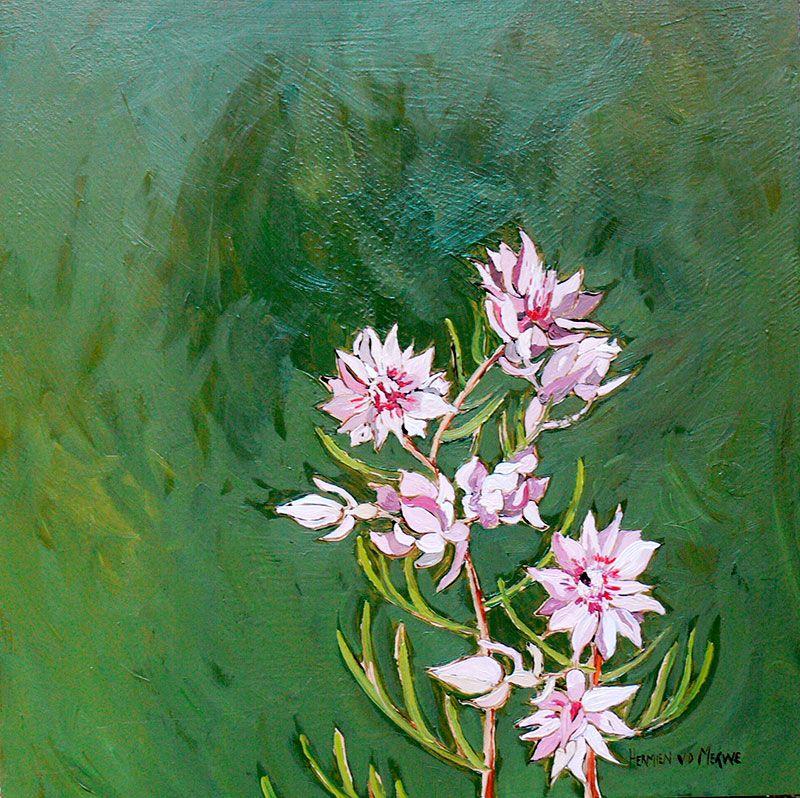 2d4f796e Title: Blushing Bride Medium: Oil paint on canvas Size: 400mm x 400mm
