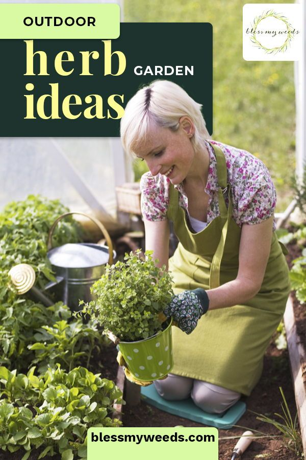 Outdoor Herb Gardening Ideas And Tips