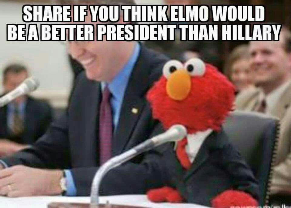 Funny Internet Meme Quotes : Almost anyone would make a better president than hillary funny