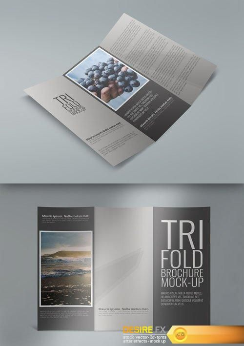 wwwdesirefxme tri-fold-brochure-mock-ups-creativemarket - blank brochure