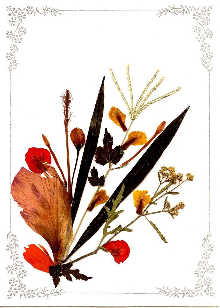cuadros realizado con flores secas - Buscar con Google Hojas y - flores secas