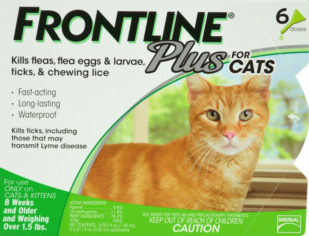 Frontline Plus For Cats Frontline Plus For Cats Cats And Kittens Fleas