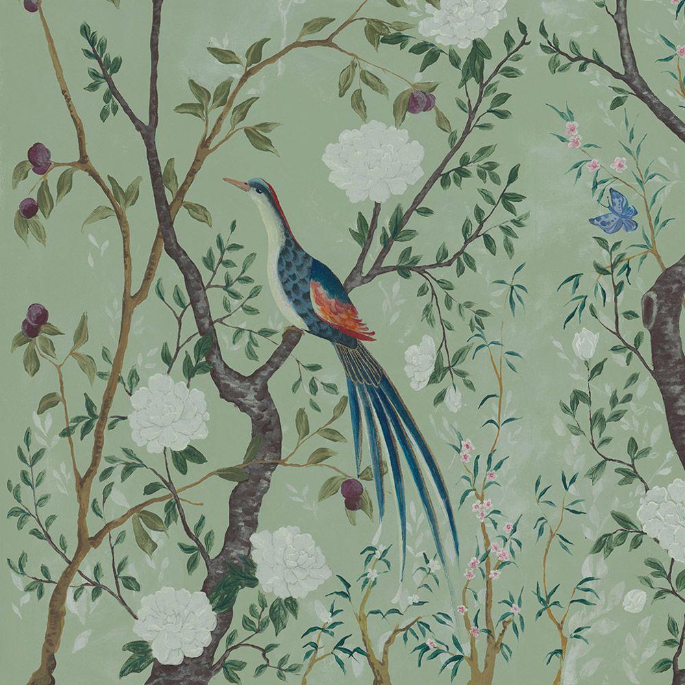 carta da parati con tema natura, flora e fauna e paesaggi. Pin Su Decorare Le Pareti