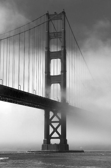 The golden gate meets the fog