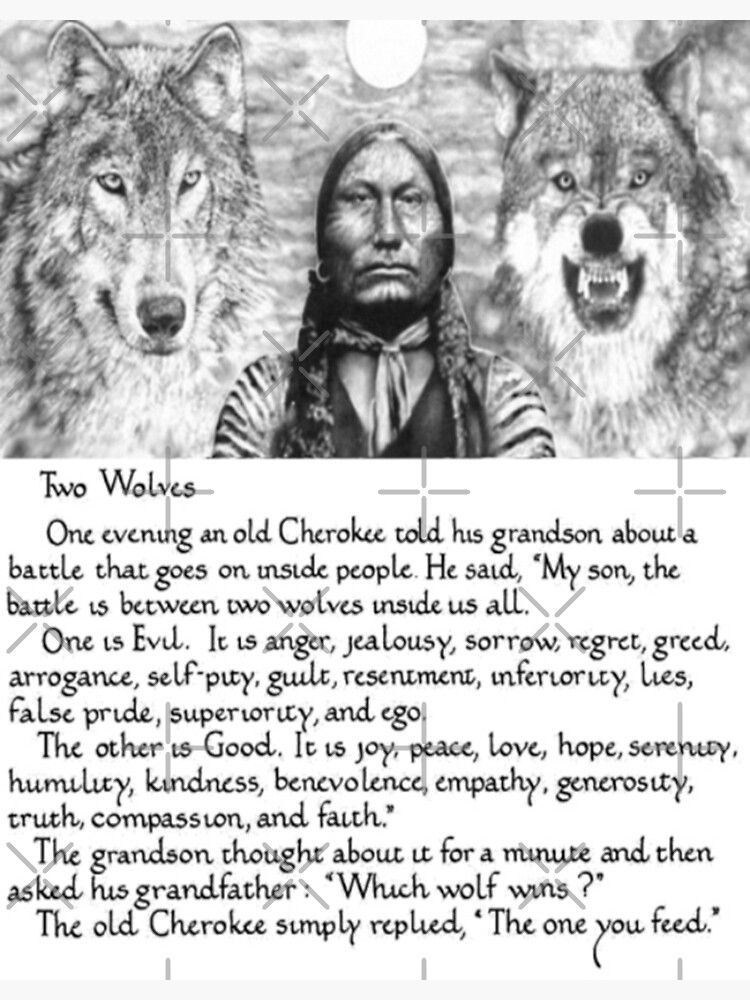 Wise Cherokee saying/ story about 2 wolves Photographic Print by neworderu2