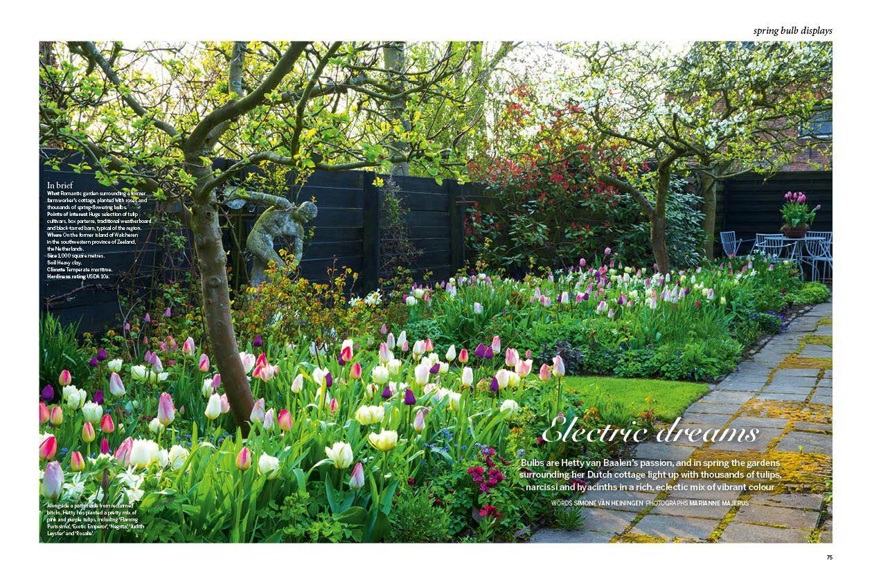 Luciano Giubbilei Chelsea 2014 Gardens Gardendesign In 2020 Garden Design Chelsea Garden Landscape Design