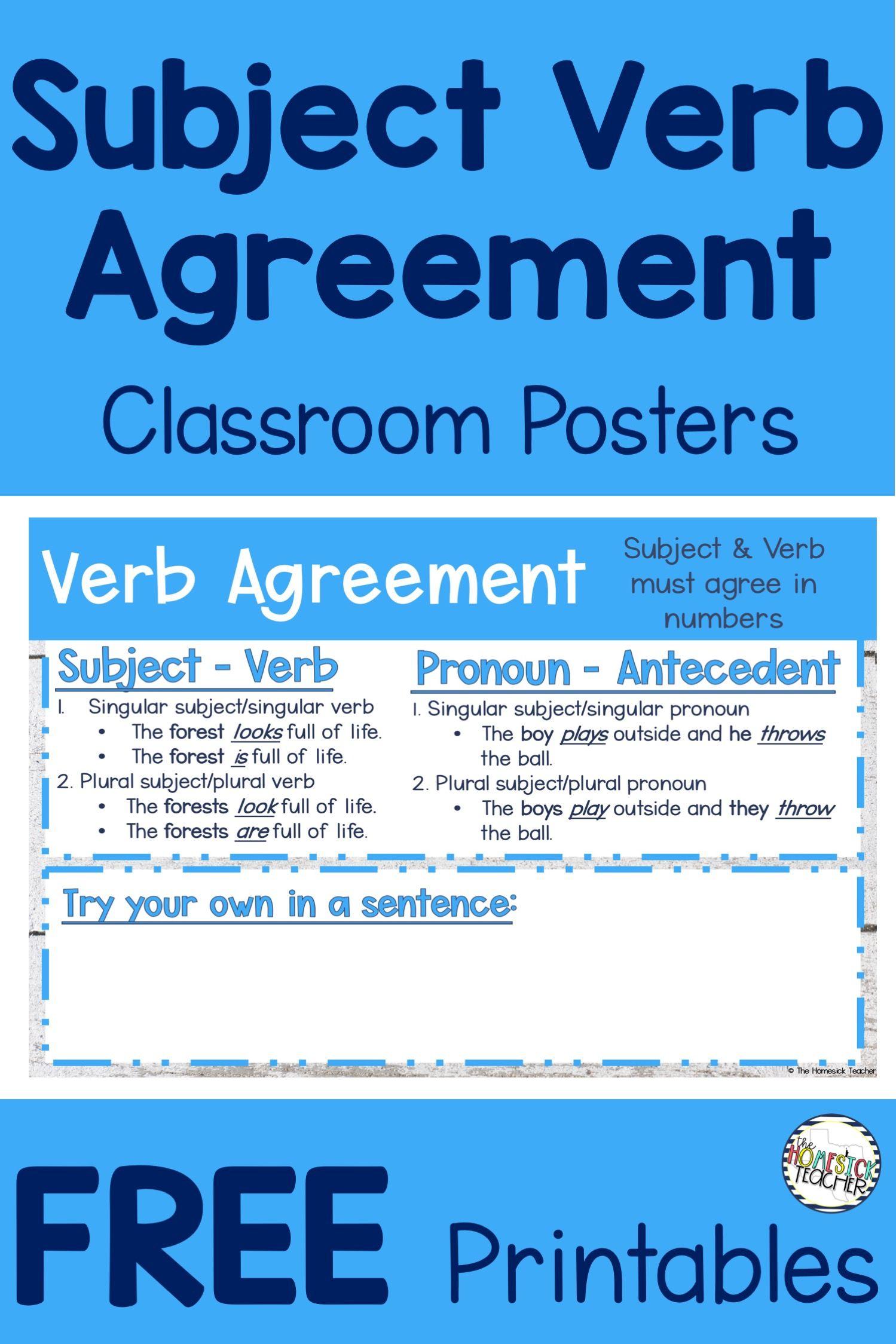 Grammar Posters 3rd Grade