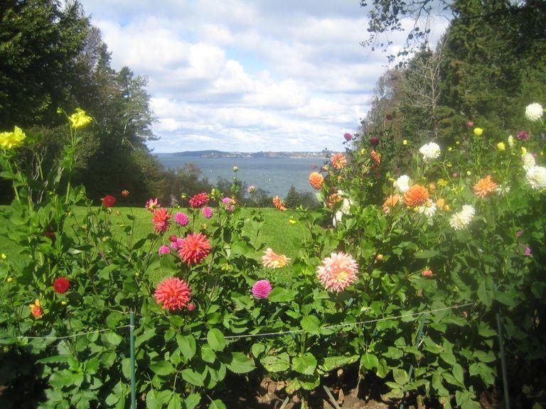 Garden at President Roosevelt's summer cottage in New Brunswick, Canada