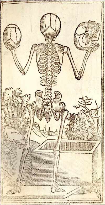Isagogae breves per lucidae by Jacopo Berengario da Carpi featuring an illustration of a keleton standing with its back showing holding a skull in each upraised hand. National Museum of Medicine,  Bologna,  Isagogae breues, perlucidae ac uberrimae, in anatomiam humani corporis a communi medicorum academia usitatam, 1523 (https://pinterest.com/pin/287386019947522227). Enlarge: https://www.pinterest.com/pin/287386019945959739