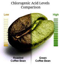 Buenasiembra El Café Verde Es Bajo En Cafeína Y No Estimulante Granos De Café Verde Cafe Verde Propiedades Granos De Café
