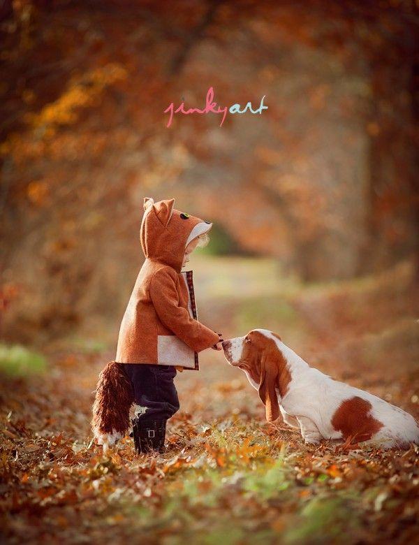 el zorro y el sabueso... / fox and hound...omg