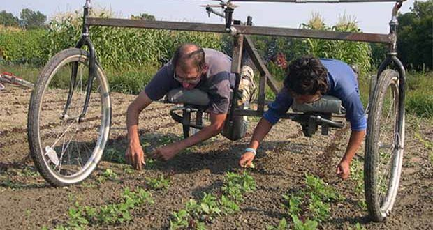 2 Build A Hand Held Seeder To Let You Stand Up To Plant Beans And