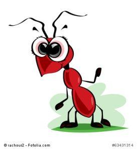 Zimt Gegen Ameisen Im Haus Wirksam Oder Nicht Ameisen Im Haus