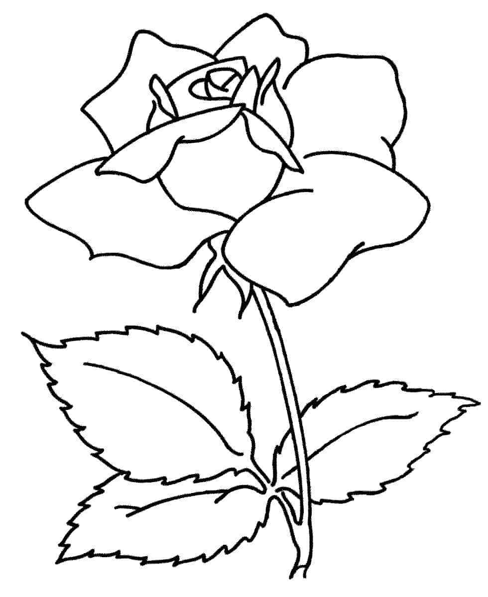 Simple Flower Coloring Pages | Flower coloring sheets ...