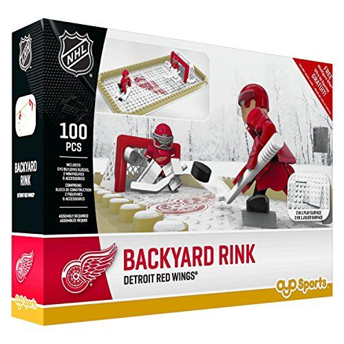 NHL Detroit Red Wings Backyard Rink Set, Small, Black