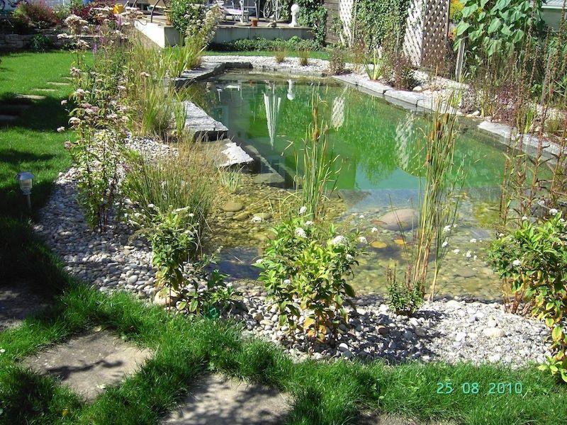 piscine naturelle en allemagne piscine naturelle. Black Bedroom Furniture Sets. Home Design Ideas