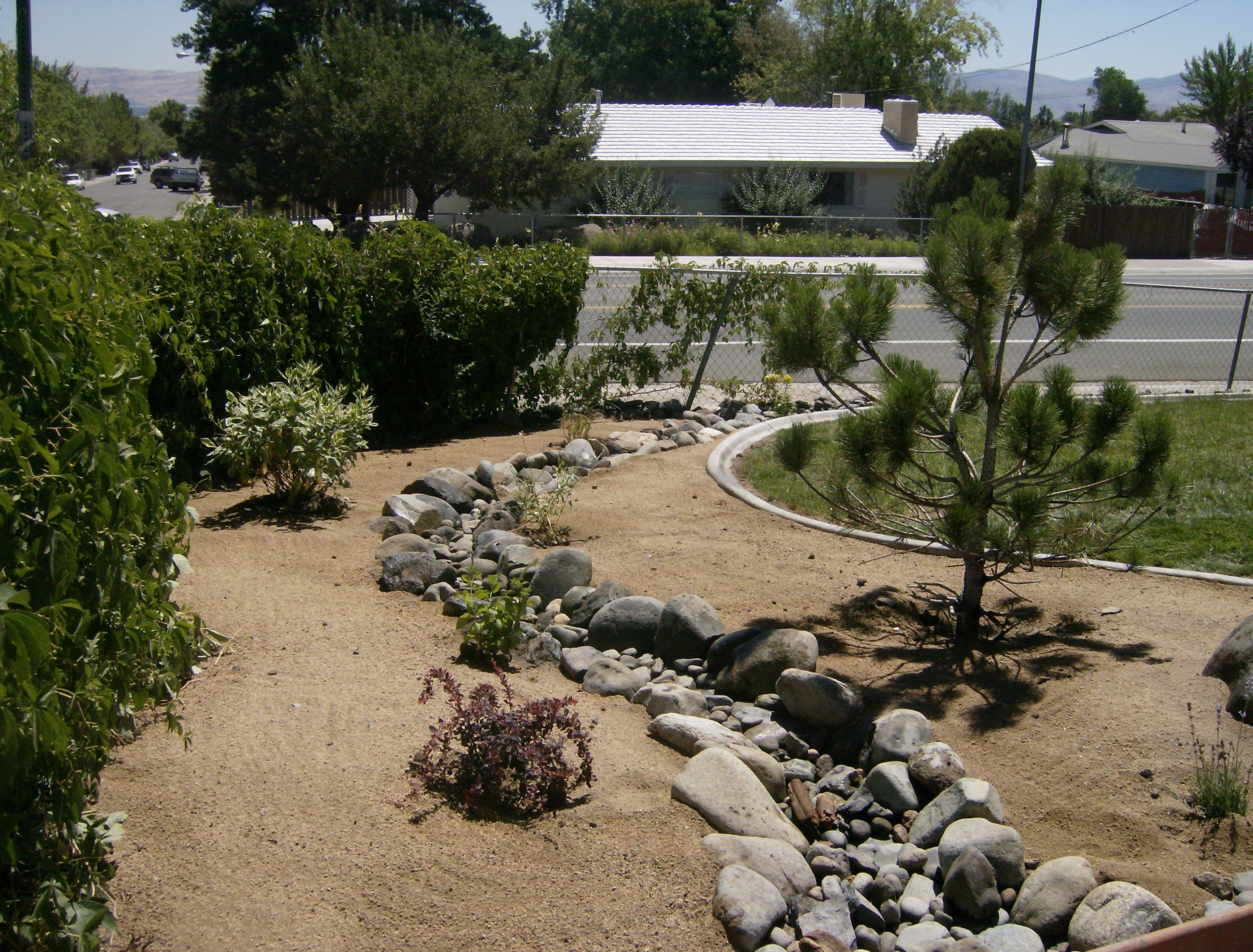 Dry river bed landscaping ideas drainage steve for Dry garden designs
