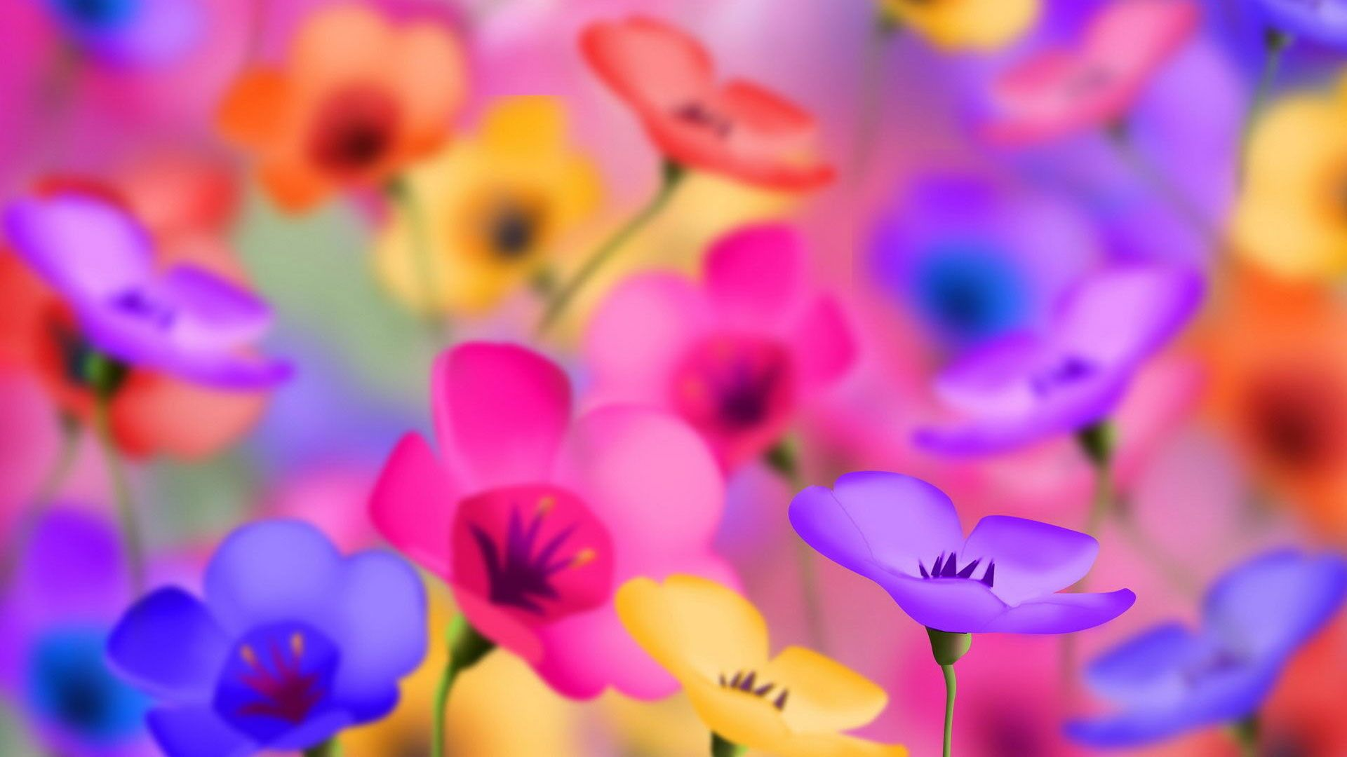 Hd Pics Photos Flowers Colorful Bright Desktop Background Wallpaper Colorful Flowers Amazing Flowers Flower Pictures