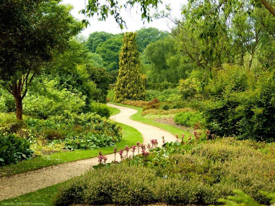 cambridge university botanic garden   Express your nature ...