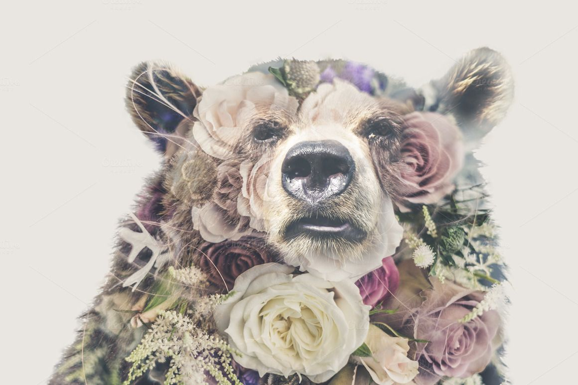 Double Exposure 'Bear and Roses' | Animal tattoos, Black ...
