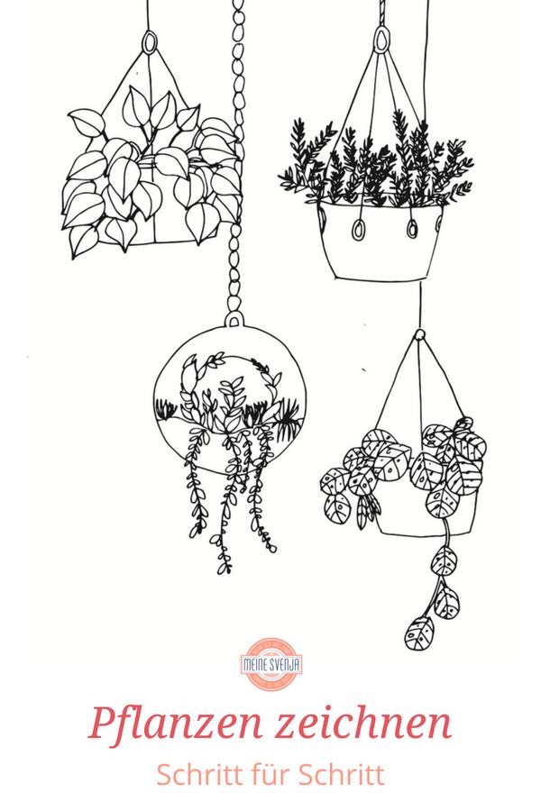 Pflanzen Zeichnen Fur Anfanger Zeichnen Fur Anfanger Zeichnen