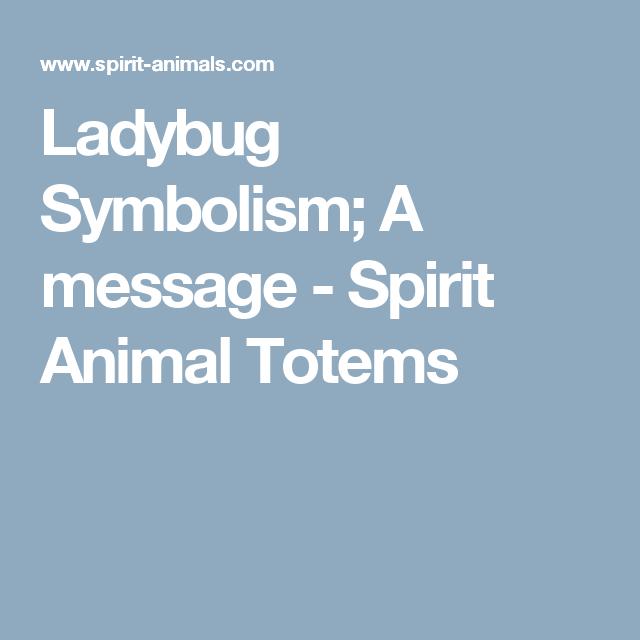 Ladybug Symbolism A Message Spirit Animal Totems Spiritual