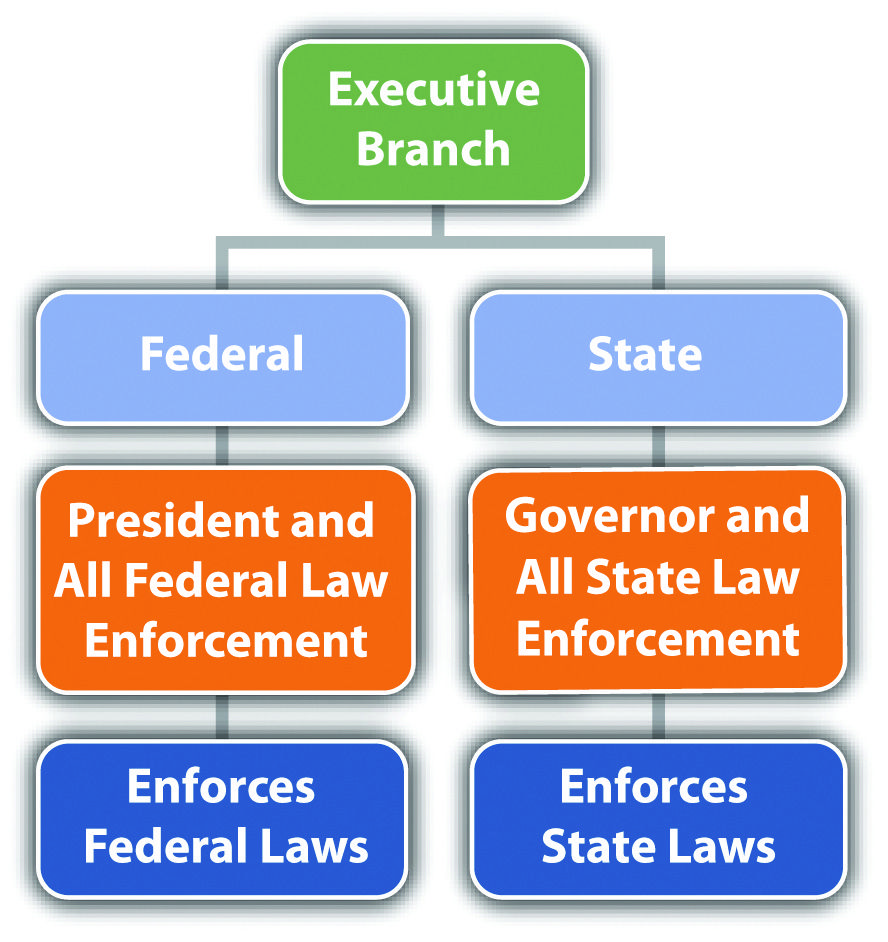 Outlines The Different Branches Of Government And Provides A