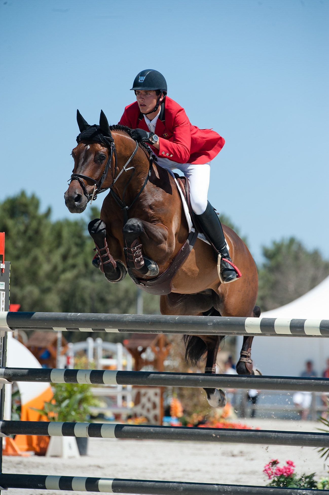 Double H Farms acquires Carlos V.H.P.Z for McLain Ward - Noelle Floyd