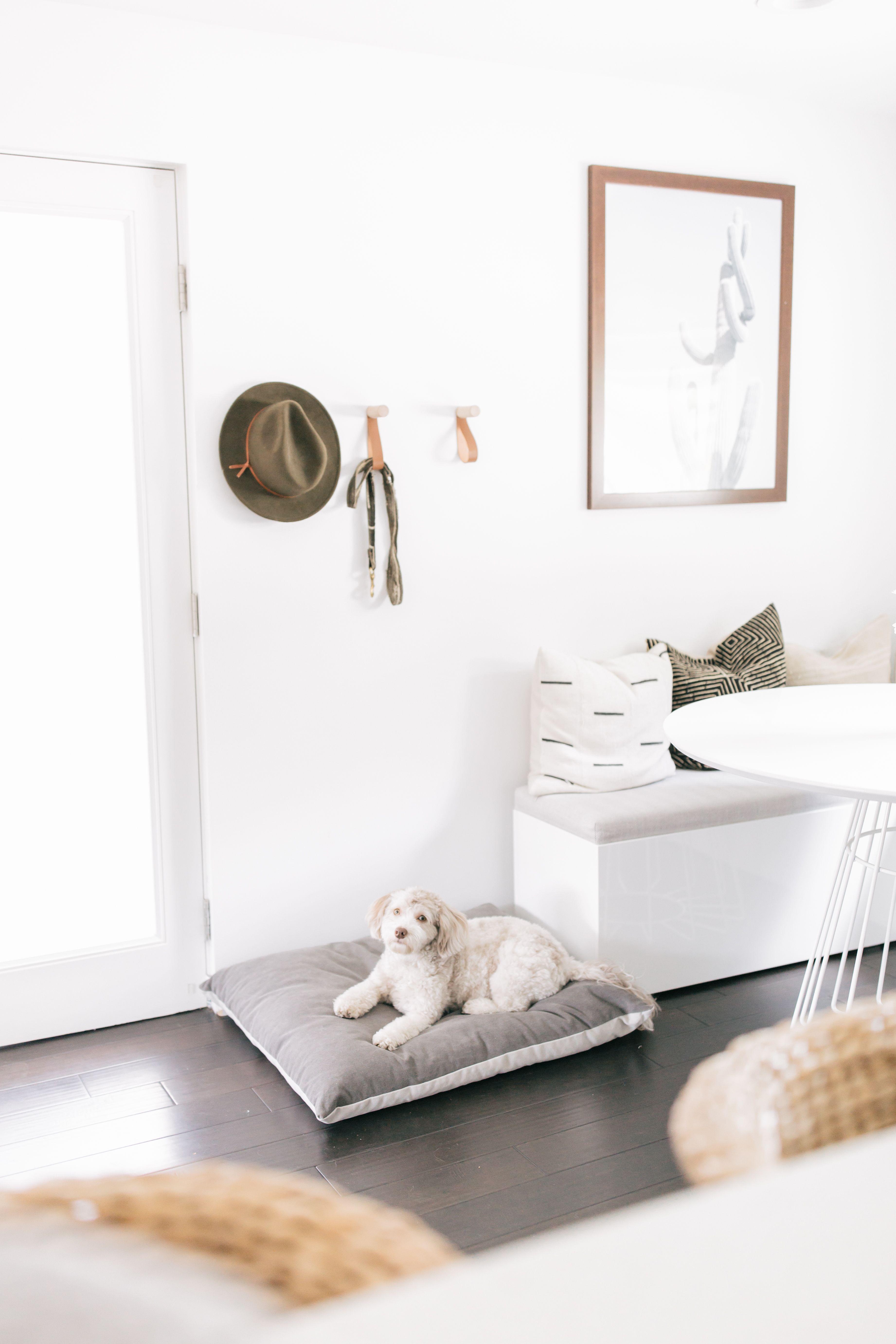 Dog Bed Parachute Dog bed, Dog bed modern, Dog home decor