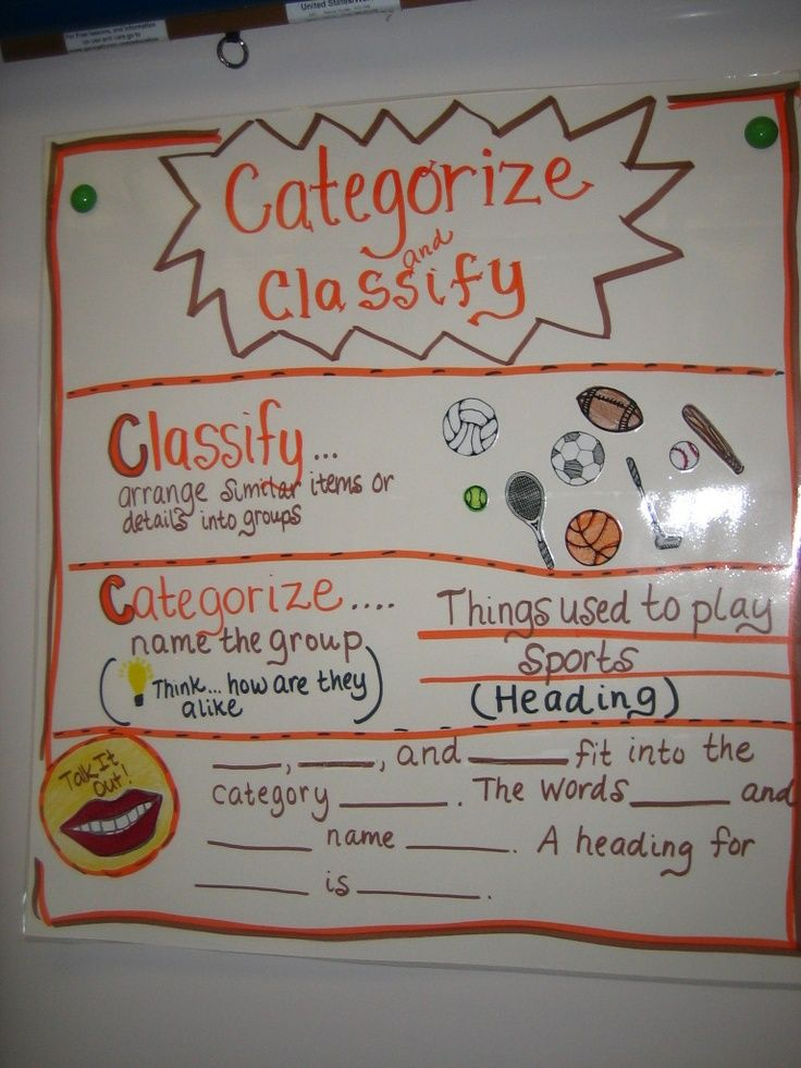 Classify Categorize Anchor Chart Google Search Classroom