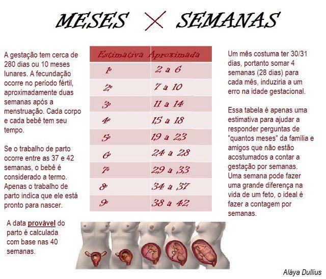 The Mammys Tabela Correta Das Semanas Da Gestacao Semanas Da