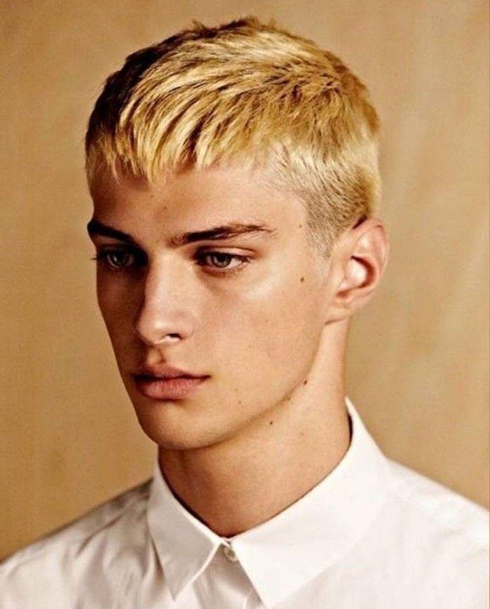 coiffure,homme,tendance,coupe,cheveux,homme,court,dégradé,